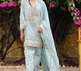 Deepsy Suits Sana Safinaz Kurnool Collection 19 Pure Cotton Gold Print With Embroidery Salwar Suit 166